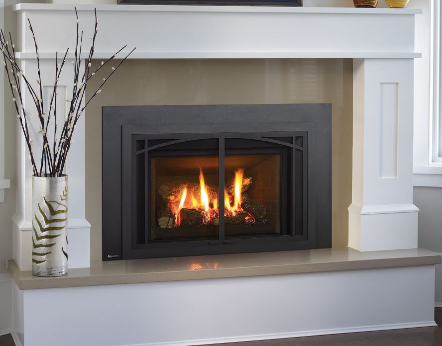 Regency Liberty® LRI4E Medium Gas Insert – Portland Fireplace Shop : regency fireplace inserts : Fireplace Design