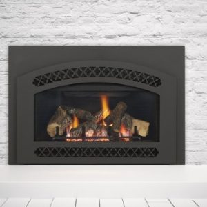 Heat Amp Glo Cosmo Gas Insert Portland Fireplace Shop