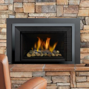 Regency Horizon® Radiant HRI4E Gas Insert