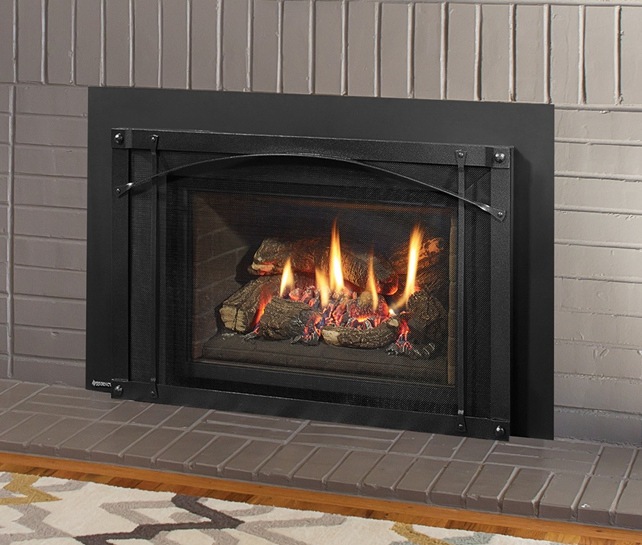 Regency Liberty Lri4e Medium Gas Insert Portland Fireplace Shop