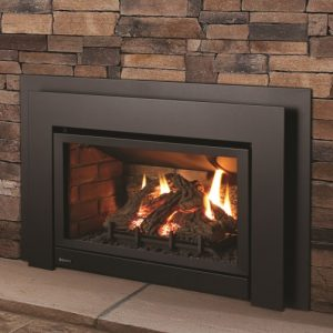 Regency Energy™ U31 Gas Insert