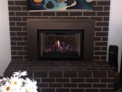 Gas Insert With Bronze Surround Portland Fireplace Shop